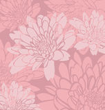 Floral. Vector illustration of   mum flower background Royalty Free Stock Photography