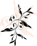 Floral vector ornaments. Elements - vector illustration Royalty Free Stock Images