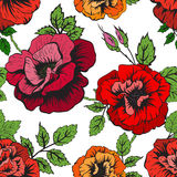 Floral vector pattern Royalty Free Stock Image