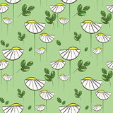 Floral vector pattern with chamomiles and green leaves. Seamless print for textile and wrapping paper Vector Illustration