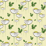 Floral vector pattern with chamomiles and green leaves. Seamless print for textile and wrapping paper Stock Photo