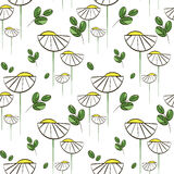 Floral vector pattern with chamomiles and green leaves. Seamless print for textile and wrapping paper Stock Illustration