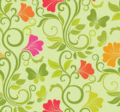 Floral vector seamless background Stock Images