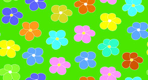 Floral vector seamless pattern with multicolored daisy flowers on a green field background Stock Image