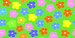 Floral vector seamless pattern with multicolored daisy flowers on a green field background Stock Images