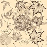 Floral  vector seamless wallpaper with foliage Royalty Free Stock Images