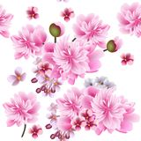 Floral vector seamless wallpaper with pink  flowers Royalty Free Stock Photos