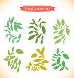 Floral vector set. Collection of drawn branches. Decorative curly elements Royalty Free Stock Photos