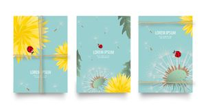 Floral vector set of posters, flyers or cards with dandelions and rope. Vintage retro templates design. Spring or summer bright ye. Floral vector set of posters Stock Images
