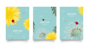 Floral vector set of posters, flyers or cards with dandelions. Vintage retro templates design. Spring or summer bright yellow flow. Ers, seed heads and cute Stock Photos