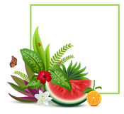 Floral Vegetable template greeting card frame Stock Image