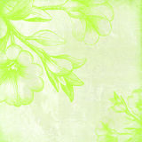 Floral verde Imagens de Stock Royalty Free