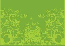 Floral verde e borboletas ilustração stock