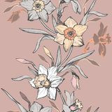 Floral vertical seamless border with hand drawn flowers daffodils, narcissus. royalty free stock photography