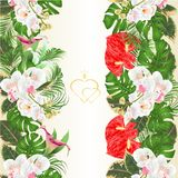 Floral vertical border seamless background bouquet with tropical flowers floral arrangement, with beautiful white orchids ,lili, royalty free illustration