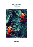 Floral vertical postcard design with guzmania flowers, monstera and royal palm leaves. Exotic hawaiian vector background Stock Image