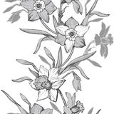 Floral vertical seamless pattern with hand drawn flowers daffodils, stock image