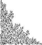 Floral vignette LX. Floral vignette. Eau-forte illustration royalty free illustration