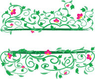 Floral Vine Frame Stock Photography
