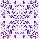 Floral vine grape violet seamless pattern. Design Floral vine grape violet seamless pattern Stock Photos