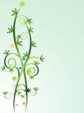 Floral Vines Royalty Free Stock Photography