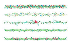 Floral vines, border, liana with leaves and flowers. drawing watercolor. Royalty Free Stock Photos