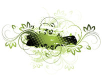 Floral vines illustration. An illustration in green and black with floral vines Royalty Free Stock Photos