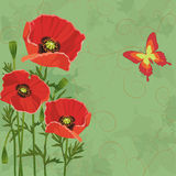 Floral Vintage Background With Poppies Stock Photography