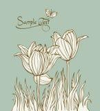 Floral vintage card Stock Photos