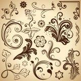 Floral vintage design elements. Stock Photo