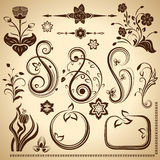 Floral vintage design elements. Royalty Free Stock Image