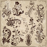 Floral vintage design elements Royalty Free Stock Photo
