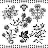 Floral vintage design elements. On beige background. Set 30 Stock Photo