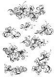Floral vintage design elements. Hand-drawn nature page dividers and decorations isolated on white background Royalty Free Stock Images