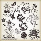 Floral vintage design elements Royalty Free Stock Images