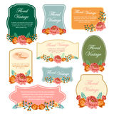 Floral Vintage Label. Set label of floral with vintage or retro style Royalty Free Stock Photos