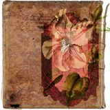 Floral vintage secret diary grunge background Royalty Free Stock Photo