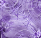 Floral  violet beautiful background . Wallpapers of light violet. Flower composition. Stock Images