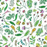 Floral vivid seamless pattern with colorful flowers tropical, butterfly, birds vector Royalty Free Stock Photo