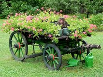 Floral wagon Royalty Free Stock Image