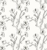 Floral wallpaper with sakura Stock Image