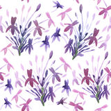 Floral Watercolor Background. Royalty Free Stock Photography