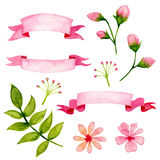 Floral Watercolor Design Elements. Illustration of Floral Watercolor Design Elements Stock Photos