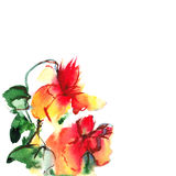 Floral watercolor illustration. Copy space Stock Photography