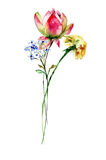 Floral watercolor illustration. With spring flowers Royalty Free Stock Photo