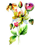 Floral watercolor illustration Stock Image