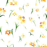 Floral watercolor pattern with yellow daffodils. Royalty Free Stock Image