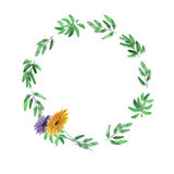 Floral watercolor wreath with deep green leaves and two flowers on a white background royalty free stock photography