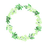 Floral watercolor wreath with green flowers and leaves on a white background Stock Photography
