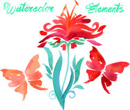 Floral watercolored graphic elements Stock Photography